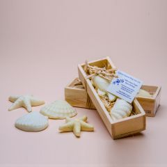 Small sea shell soaps in a wooden box